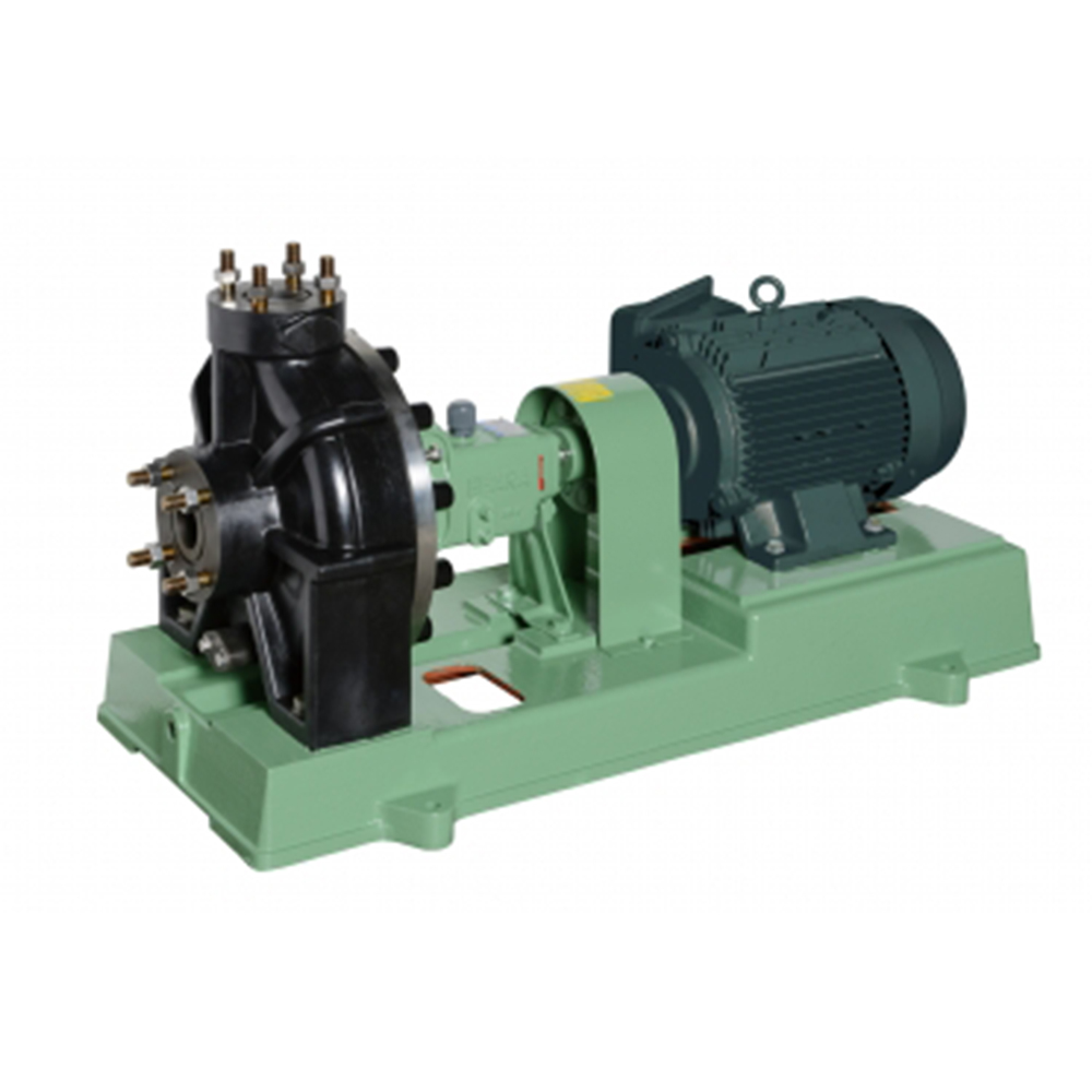 Ebara Ebara Pentam Chemical and Sea Water Elastomer Pump FPS