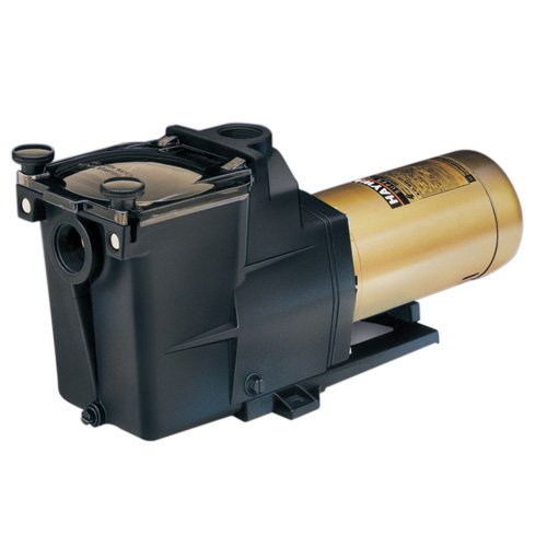 Swimming Pool Pump Hayward Super Pump®